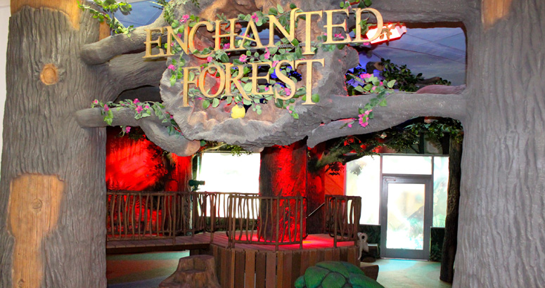 Enchanted forest inside children s hospital in el paso for Indoor gardening documentary