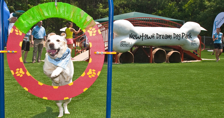 Purina Dream Dog Park at Newtown Park in Johns Creek, GA | cre8play