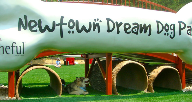 Newtown Dream Dog Park with Hollow Log Crawls - slideshow version