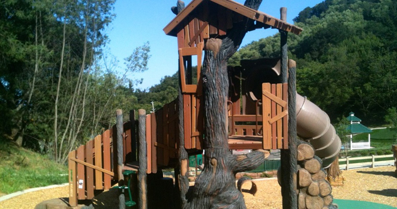 Tree House Slide at Rankin Park in Martinez CA - slideshow version