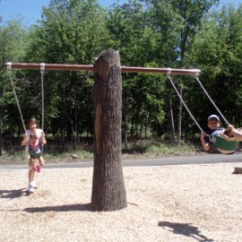 Cre8Play Tree Trunk Swing
